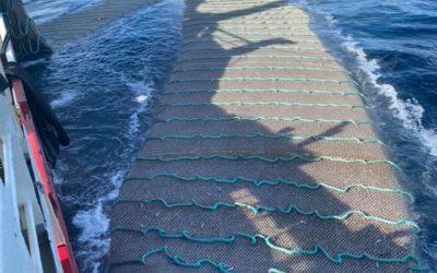 Brennholm ferdig med kolmulefiske 2020